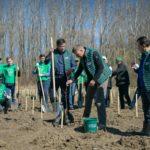 Klaus Iohannis a plantat un copac în Dâmboviţa: Este inadmisibil ca în secolul 21 să mai avem tăieri ilegale masive de păduri