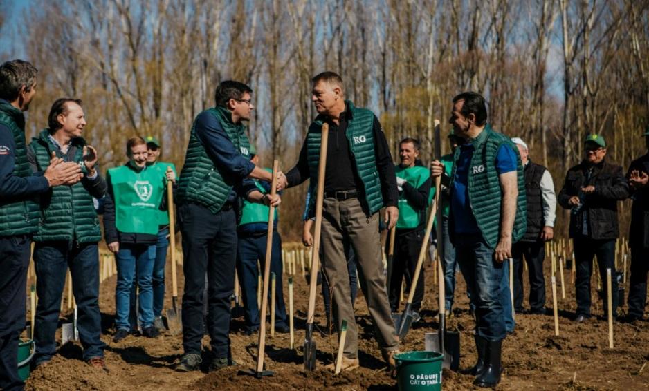 """Campanie de împădurire """"O pădure cât o țară"""", lansată de Ministerul Mediului, sub patronajul președintelui Iohannis / Obiectiv: Plantarea a 2.500 de păduri de la zero"""